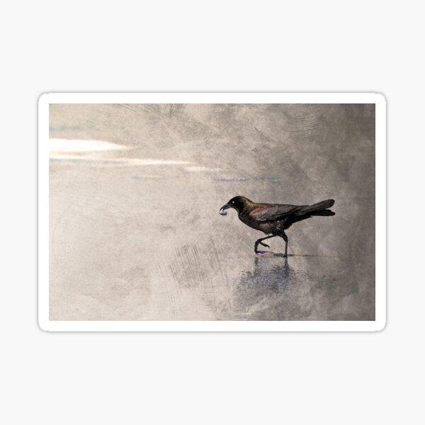 Crow Carries Sticker