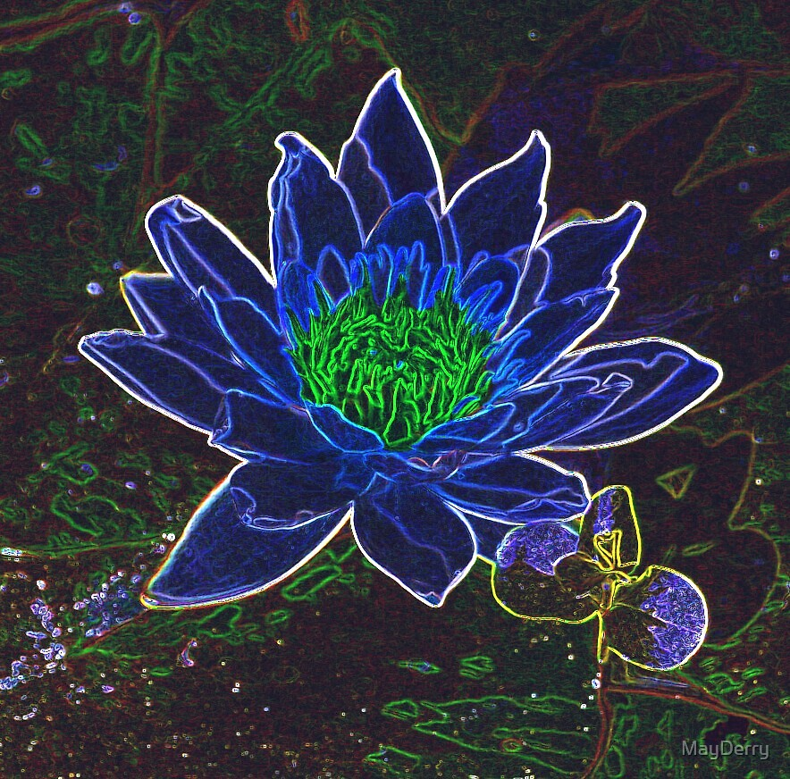 Waterlily by MayDerry