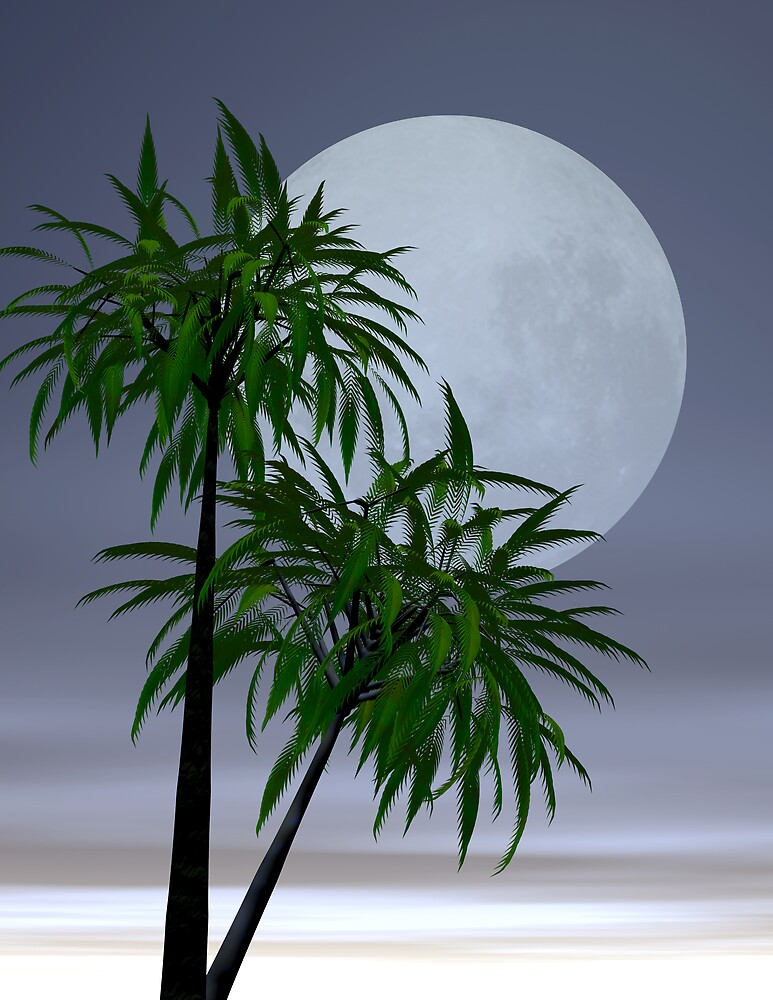 Lover's moon in the tropics by pelmof
