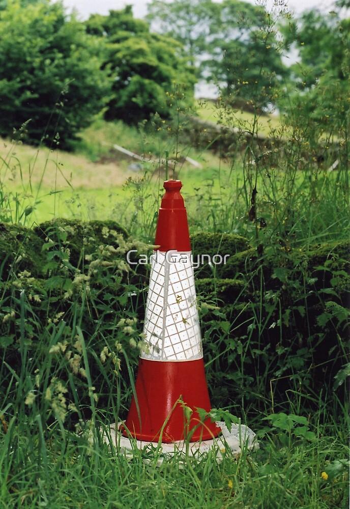 Traffic Cone 111 by Carl Gaynor