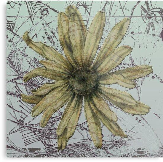 flower2 (life flower series) by lira