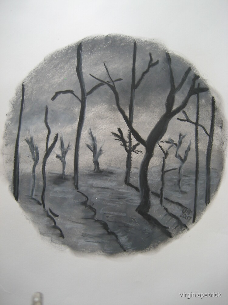 Dark Trees by virginiapatrick