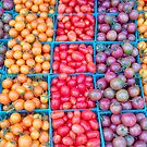 Tomatoes 4 in Santa Barbara by Christine  Wilson