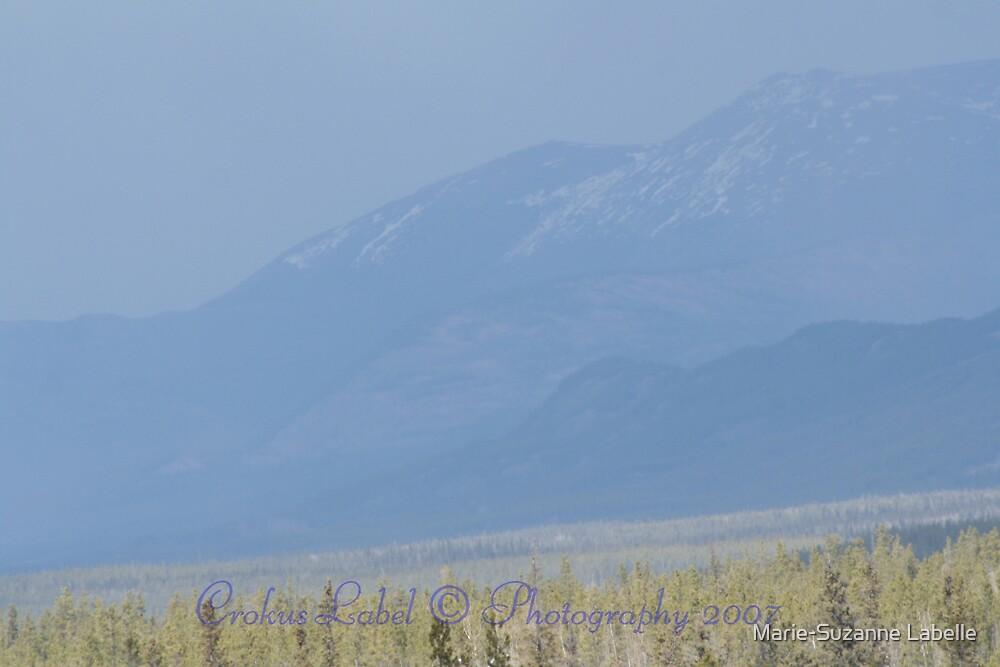 Misty-Mountain by Crokuslabel