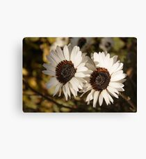 Fowers in Love Canvas Print