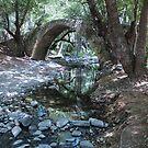Tzelefos Medieval Bridge - Cyprus by Beth A