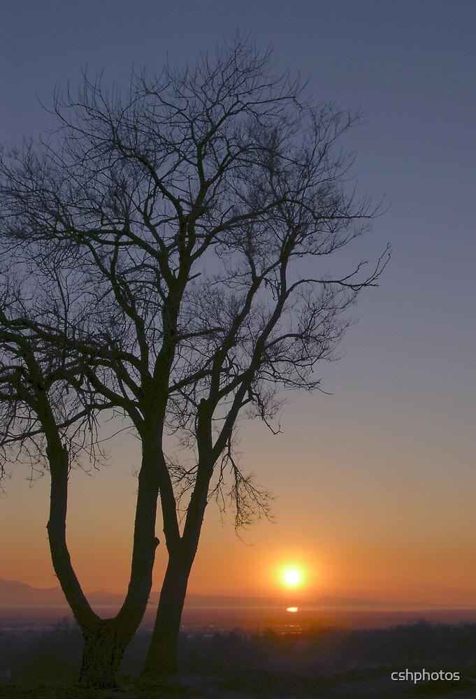 Great Salt Lake Sunset by cshphotos