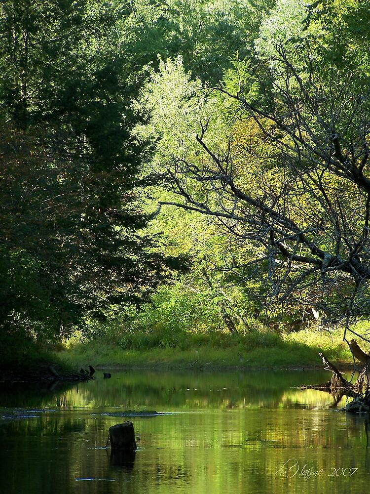River Scene by dduhaime55