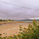 Soft Days...............................Ireland by Fara