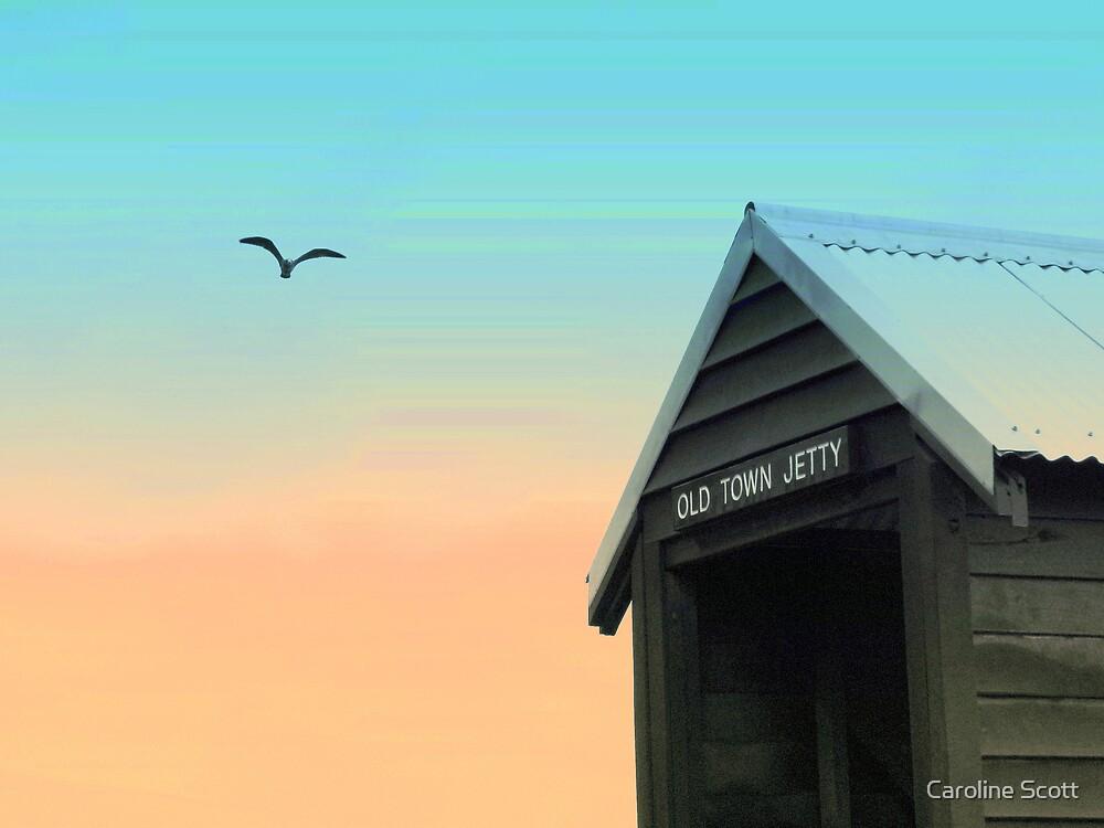 Flying High by Caroline Scott