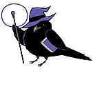 D&D Birds - Wizard by pigbee