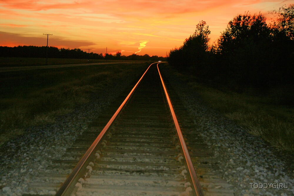 Rails of Life at Sunset by TODDYGIRL
