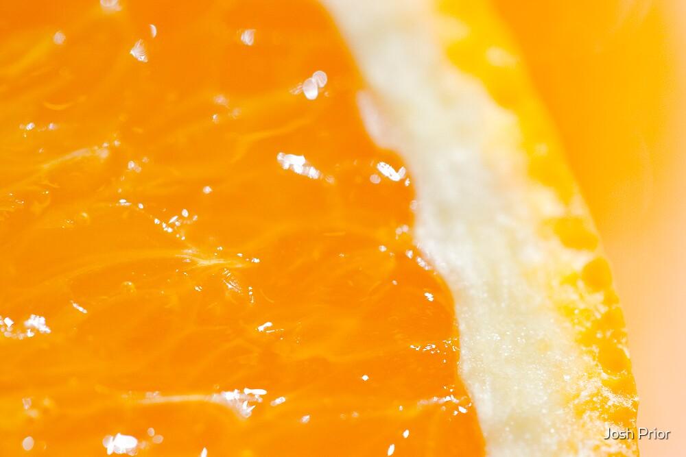 Citrus Guts by Josh Prior