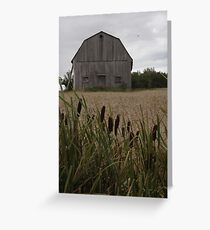 Cattails' Home Greeting Card