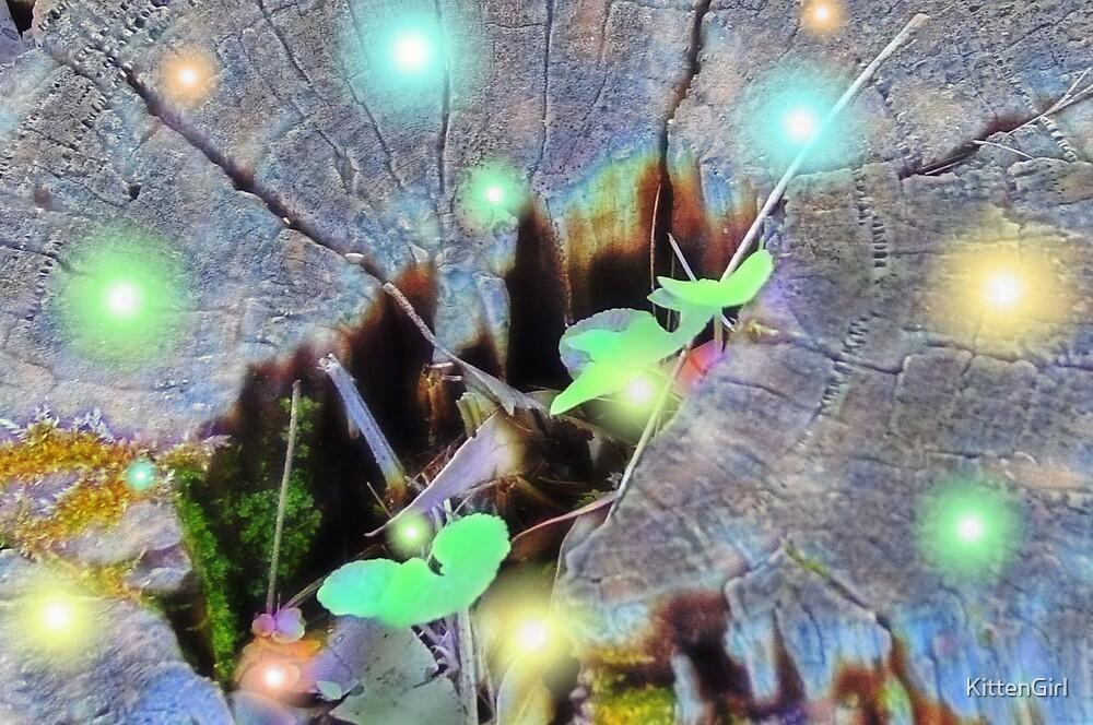 Fireflies Village by KittenGirl