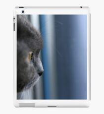 Vinilo o funda para iPad Gato en la ventana - gato en la ventana