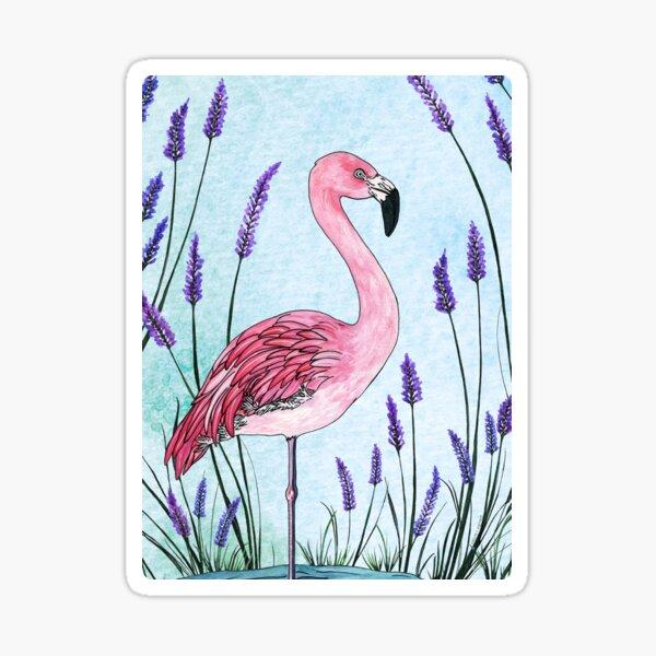 Chilean Flamingo Sticker