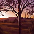 Hunter ValleySunset 1 by Grey