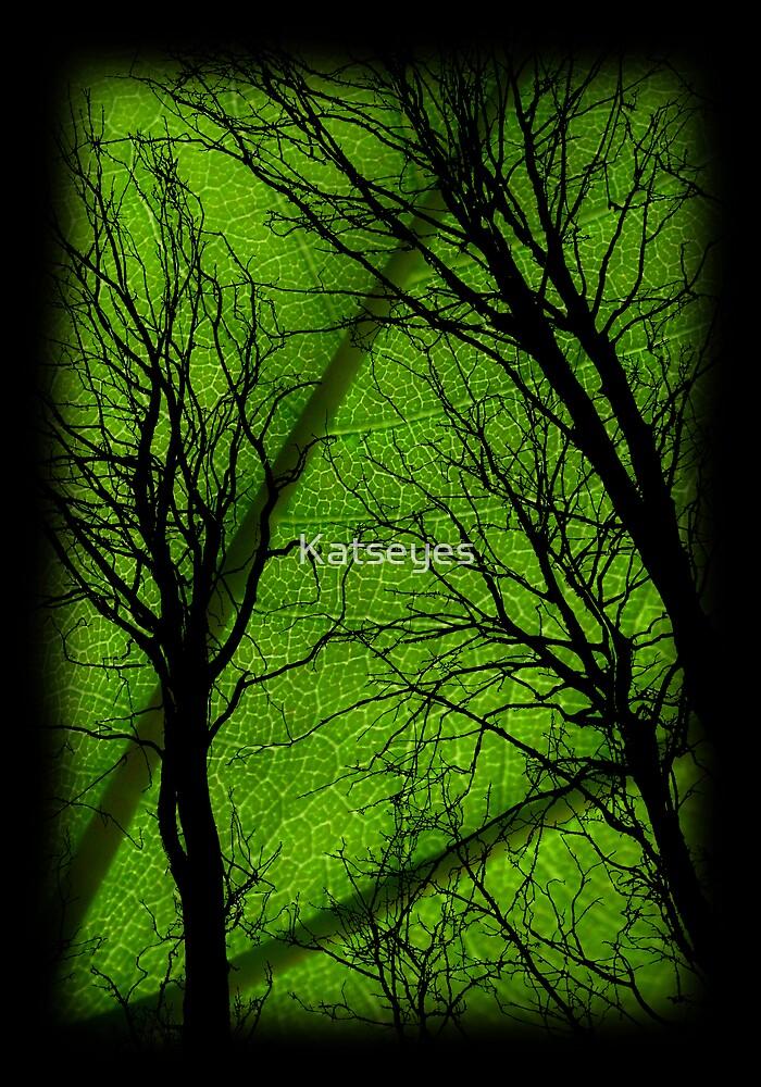 GREEN LEAF by Katseyes
