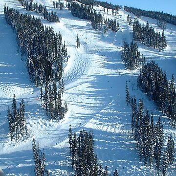 Ski run by pluffy