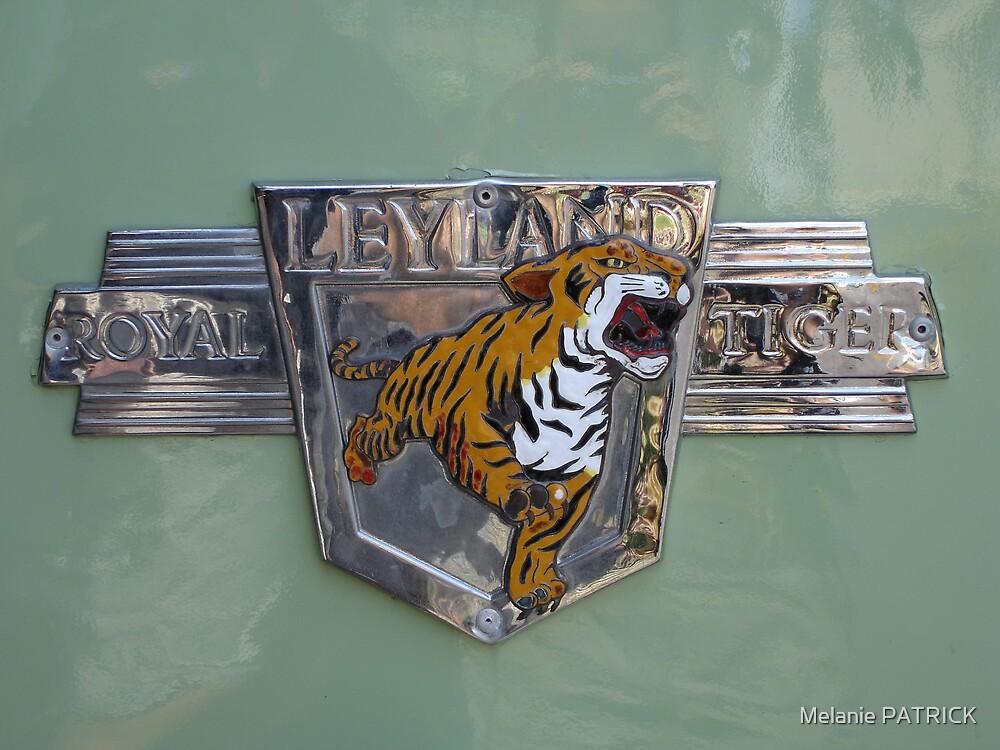 Hold the Tiger! by Melanie PATRICK