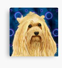 Digitally Painted Blond Hairy Yorkshire on Blue Canvas Print