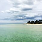 View from St Leonards Pier by trossi