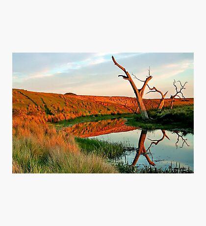 Lagoon on Thompson's Creek Photographic Print