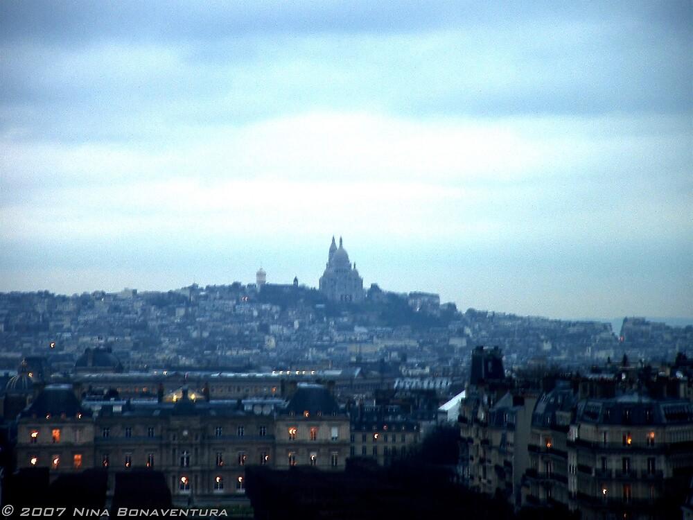 Paris at dusk by NinaB