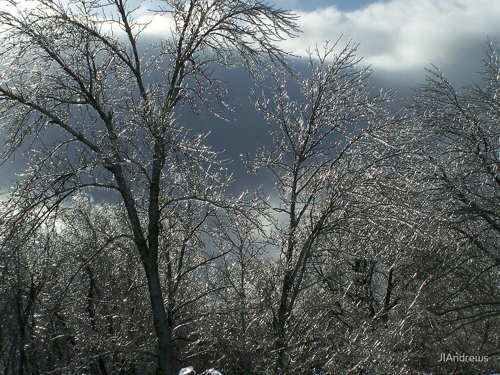 winter ice storm by JlAndrews