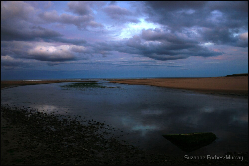 Moody Blue by Suzanne Forbes-Murray