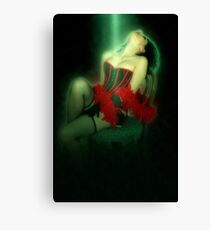 Young sexy woman in corset and fishnet stockings  Canvas Print