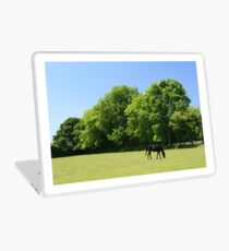 Pony Paddocks Laptop Skin