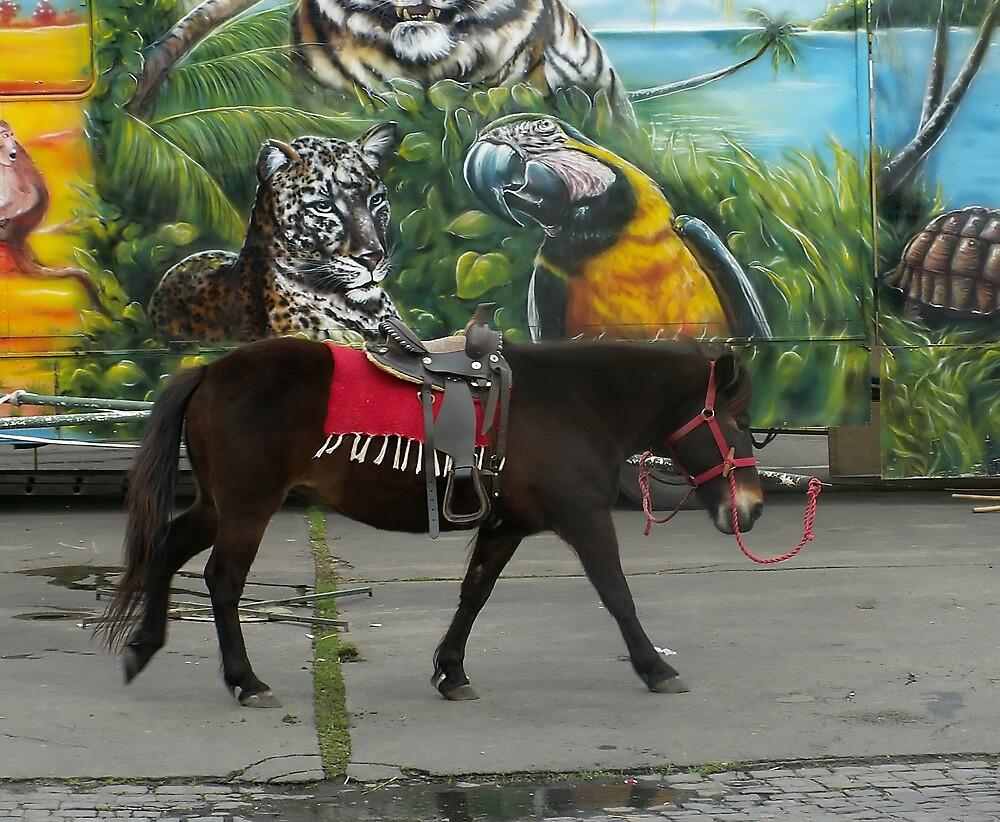 Ride me! by Plectrhelminthus