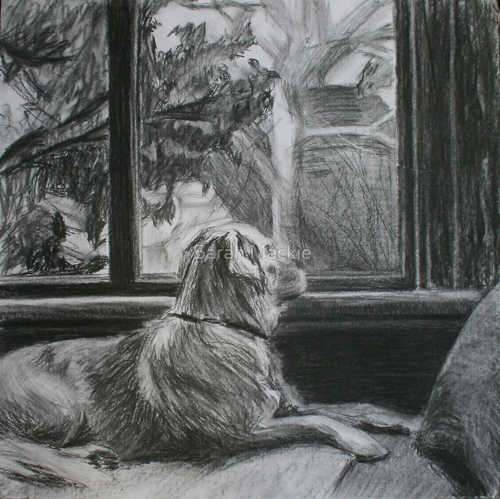 By the window by Sarah Mackie