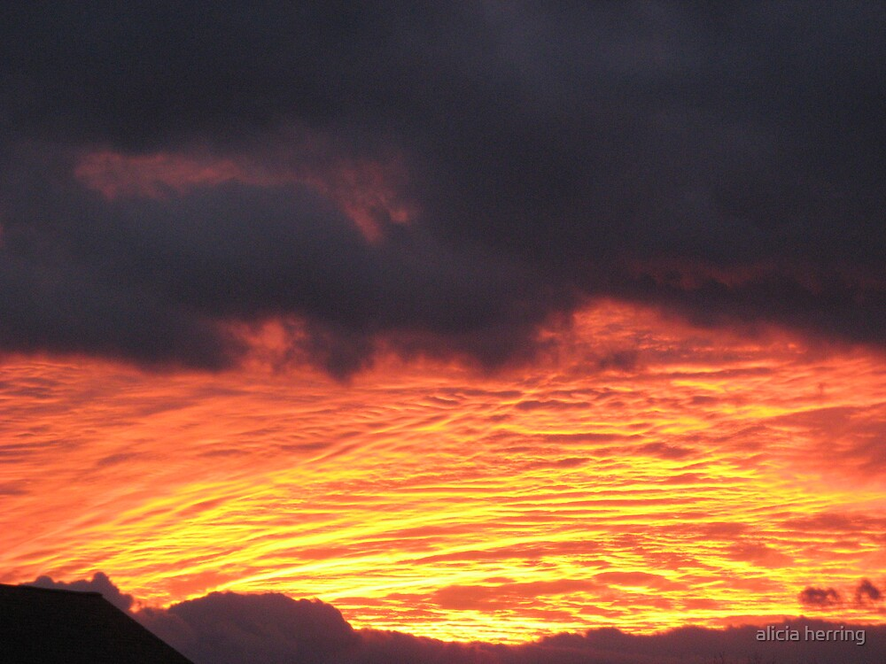 Fire in the Sky by alicia herring