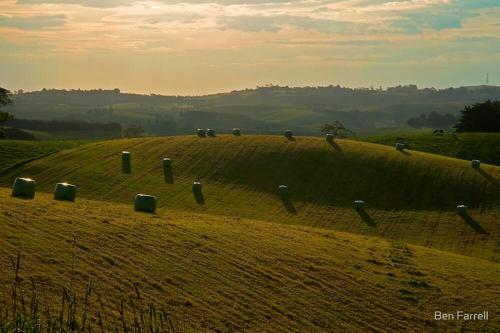Hay Barrels by Ben Farrell