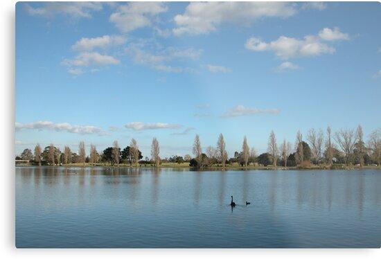 Albert Park, Melbourne by Rini Ismail