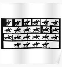 Horse in Motion, Eadweard Muybridge, ca. 1886 Poster
