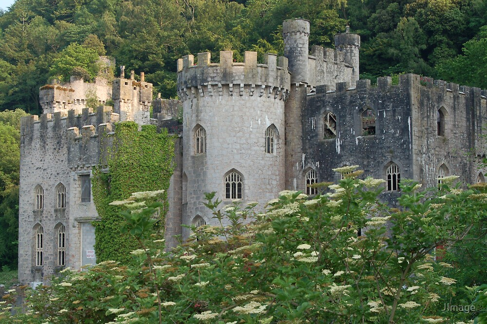 Gwrych Castle 2 by JImage