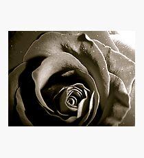 Tissue Photographic Print