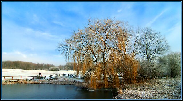 Weeping Willow by Glasseye