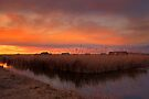 Houses in the reed by Delfino