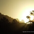 Sunset, Diggers Beach, New South Wales by alanlowney