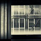 Through the window by Silvia Ganora