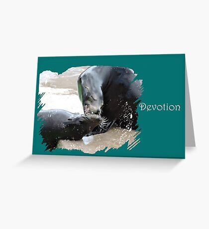 Devotion (Sea Lions) Greeting Card