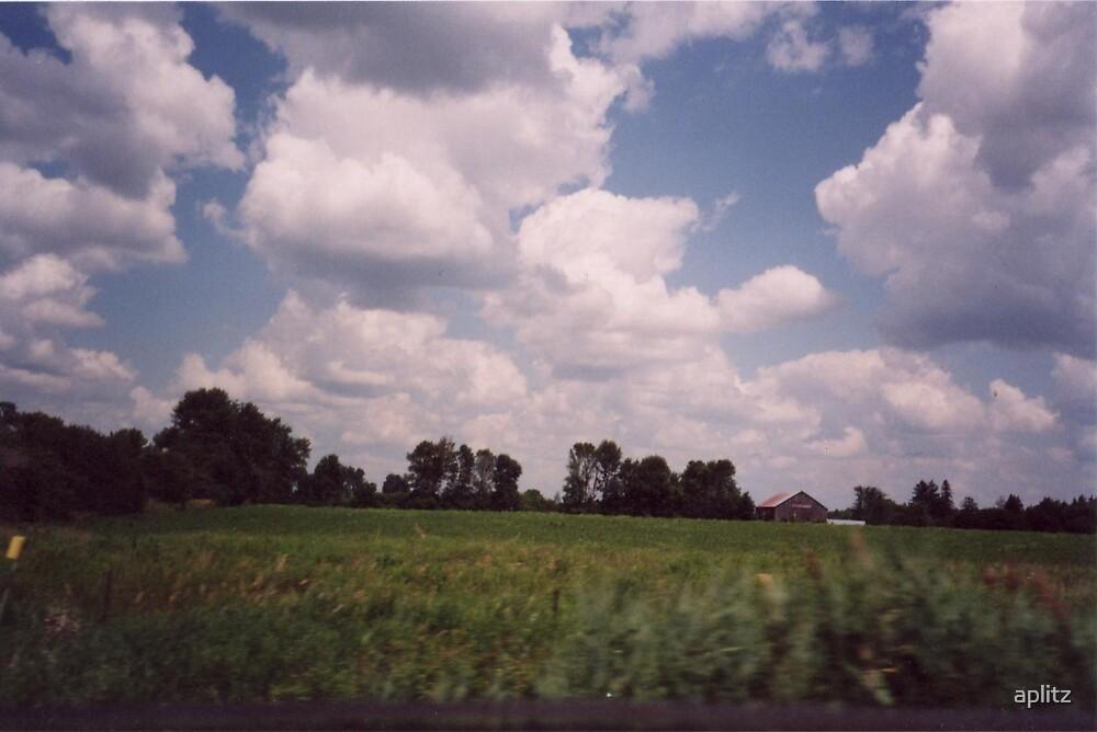FARMERS FIELDS by aplitz
