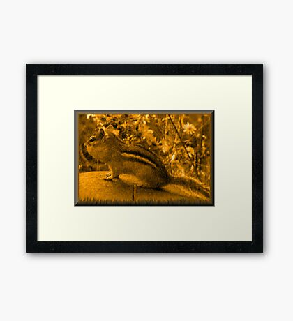Painting of a Chipmunk  Framed Print