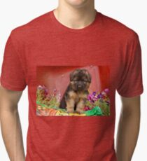 Long Coated GSD Puppy Tri-blend T-Shirt