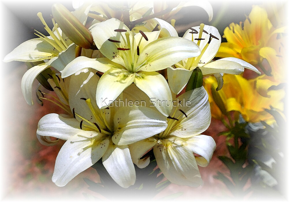 White And Yellow Asiatic Lillies by Kathleen Struckle
